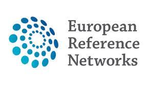 ERN-logo-1